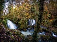 Водопад Edenvale Стоковые Фото