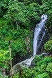 Водопад Gigit в северном Бали Стоковое Изображение RF