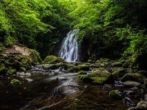 Водопад Glenone стоковые фото