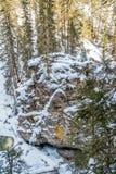 Водопад Johnston стоковая фотография rf