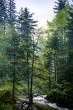 Водопад Kamyanka Стоковая Фотография