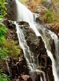 водопад mckenzie Стоковое Фото