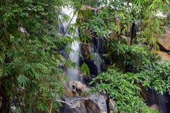 Водопад Pancing стоковое изображение