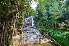 Водопад Punyaban Стоковые Изображения RF