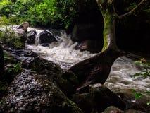 Водопад rong Nang стоковые изображения