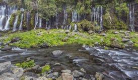 Водопад 5 Shiraito Стоковое Изображение