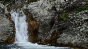 Водопад Sinia Вир сток-видео