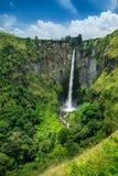 Водопад Sipisopiso (или Sipiso Piso), Суматра, Indones Стоковые Фотографии RF