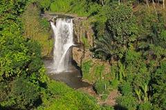 Водопад Tegallalang Стоковое Изображение RF