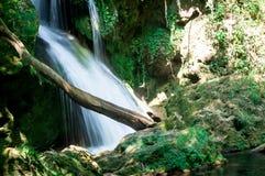 Водопад Vaioaga в национальном парке Cheile Nerei-Beușnița Стоковое Изображение RF