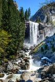 Водопад Yosemite красивый Стоковые Изображения