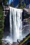 Водопад Yosemite красивый Стоковое Фото