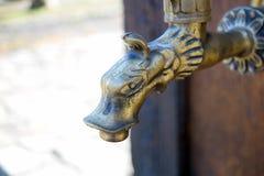 Водопроводный кран головы дракона фонтана Стоковые Изображения RF