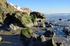 Водоросли покрыли валуны на береге пляжа улицы кресса в пляже Laguna, Калифорнии Стоковая Фотография RF