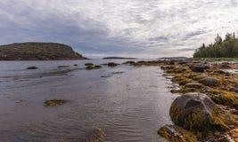 Водоросли Kuzov немца острова ландшафта на переднем плане Стоковые Изображения RF