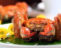Волосатый краб на блюде с листьями стоковое фото rf