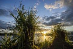 2 волосатых насыпи на заходе солнца Стоковое Фото