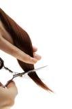 Волосы вырезывания на белизне Стоковые Изображения RF