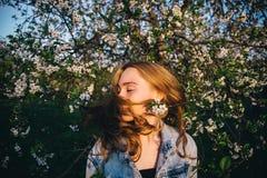 Волосы в солнце Стоковое Фото
