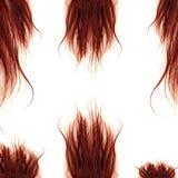 волос девушки предпосылки пинк красивейших коричневых курчавых здоровый изолированный Стоковая Фотография RF