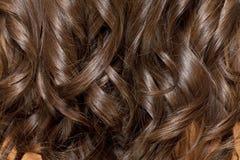 волос девушки предпосылки пинк красивейших коричневых курчавых здоровый изолированный Стоковые Изображения RF