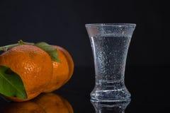 Водочка и tangerines стоковые изображения rf