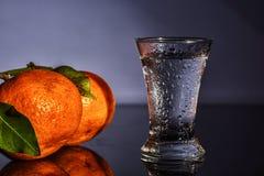 Водочка и tangerines стоковая фотография