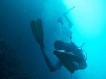 Водолазы на коралловом рифе в Бали стоковое изображение rf