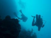 Водолазы на коралловом рифе в Бали стоковые фото