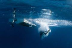 Водолаз акваланга скача от шлюпки стоковые фотографии rf