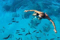 Водолаз и рыбы Стоковые Изображения