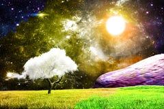 волшебная ноча бесплатная иллюстрация