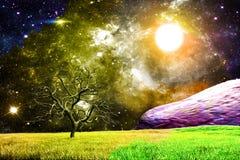волшебная ноча Стоковая Фотография RF