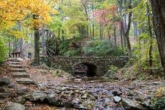 Волшебная структура осенью стоковая фотография rf