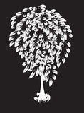 Волшебное белое дерево Стоковая Фотография