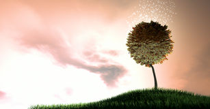 Волшебное дерево денег ранда Стоковая Фотография