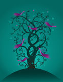 Волшебное дерево стоковые фото