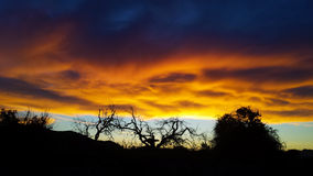 Волшебное небо в заходе солнца Стоковое фото RF