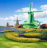 Волшебный ландшафт весны с цветниками и ветром картин цветка Стоковые Фото
