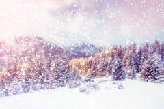 Волшебный ландшафт зимы, предпосылка с некоторыми мягкими самыми интересными a Стоковая Фотография RF
