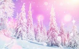 Волшебный ландшафт зимы, предпосылка с некоторыми мягкими самыми интересными a Стоковое Изображение