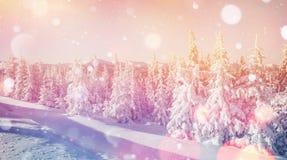 Волшебный ландшафт зимы, предпосылка с некоторыми мягкими самыми интересными a Стоковые Изображения