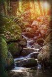 Волшебный водный источник ландшафта в осени Стоковое Фото
