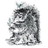 Волшебный лес - 2 Стоковое Изображение