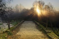 Волшебный пейзаж моста Стоковые Изображения RF