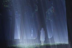 Волшебный призрак 2 леса Стоковые Изображения