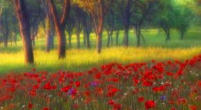 Волшебный сад Стоковые Изображения