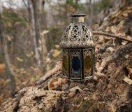Волшебный фонарик в лесе Стоковая Фотография RF