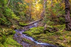 Волшебство гор Стоковая Фотография