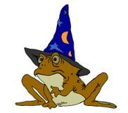 Волшебство жабы Стоковые Изображения RF